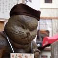 Photos: お店の呼び込みは、ろくでなし猫!