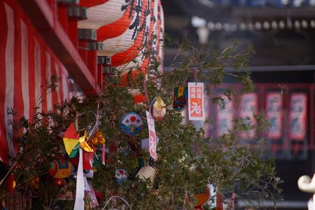 福笹、鎌倉の本覚寺!2013