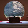 Photos: 丸窓の向うの風景2013
