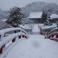 Photos: 称名寺庭園の雪景色2!2013