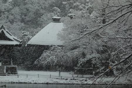 釈迦堂の雪景色!2013