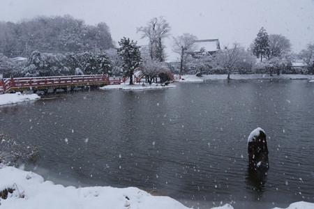 雪の称名寺全景!2013