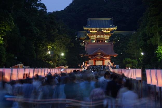 鎌倉ぼんぼり祭り!130807