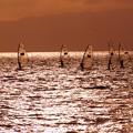 Photos: ウインドサーフィン131013-900