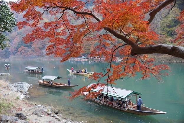 写真: 紅葉と保津川下り2!131202