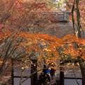 写真: 常寂光寺の黄葉4!131202
