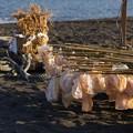 写真: 海岸でも団子売ってます!140112