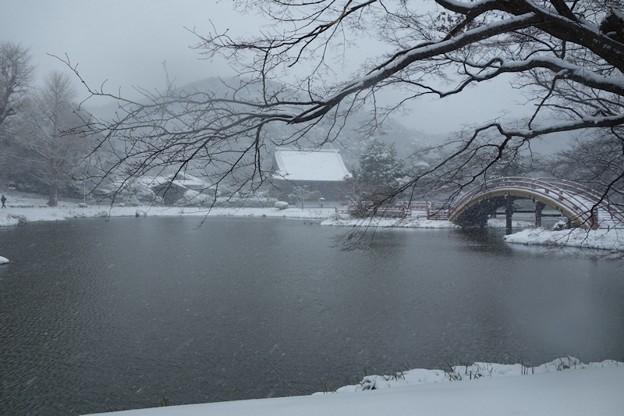 大雪の称名寺阿字池!140208