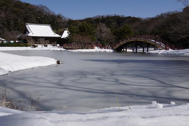 雪化粧の浄土式庭園!140209