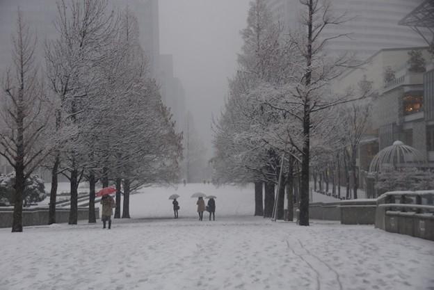 大雪の横浜みなと未来!20140214