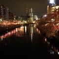 Photos: 夜桜とランドマーク!