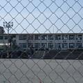 桜島には小学校もある