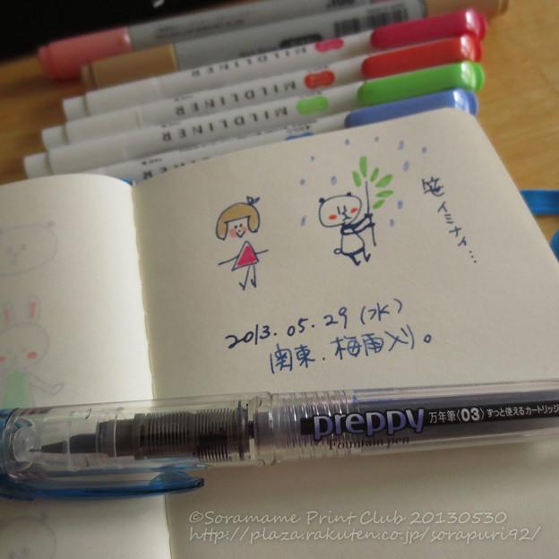 210円の万年筆