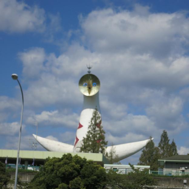 吹田で太陽の塔