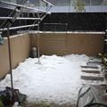 Photos: また降り積もる雪