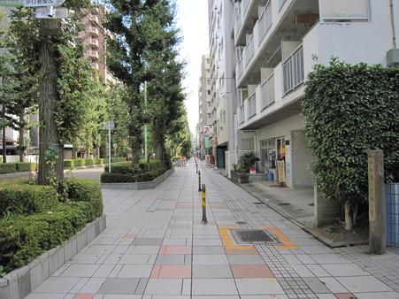 散歩道・3