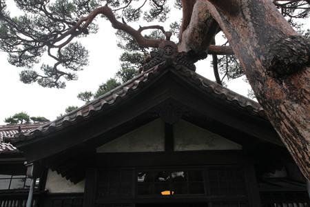 本間家旧本邸 - 03