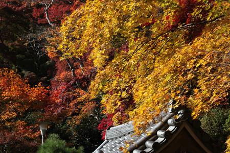 金蔵寺 - 09