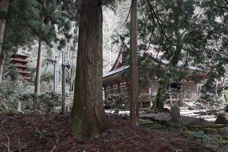 室生寺 - 15