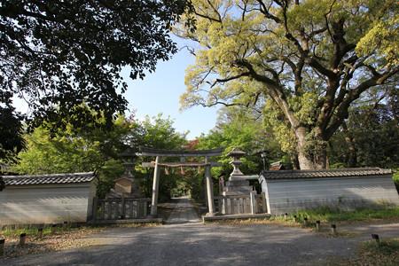宗像神社 - 1