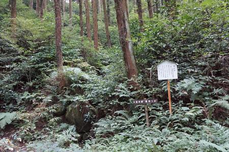 松井田城 - 14