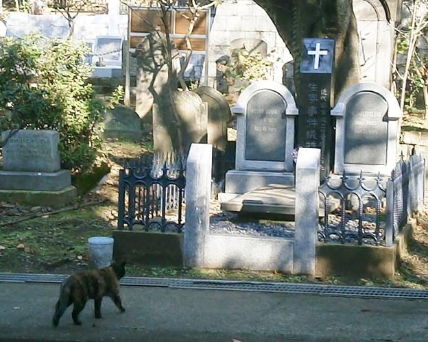生麦事件犠牲者墓地