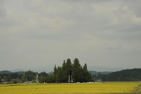 DSC_2012koyamada0001
