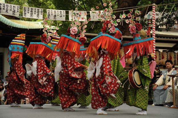写真: DSC_ojidengaku0049