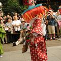 写真: DSC_ojidengaku0035