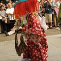 写真: DSC_ojidengaku0032