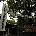 写真: DSC_ojidengaku0003