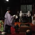 写真: DSC_yokoyamayutatemikotakusen0044