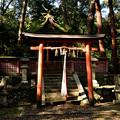 西吉野大日川向賀名生(むかいあのう)の春日神社