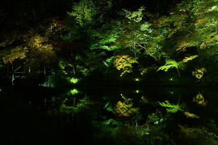 高台寺夜間特別参拝2