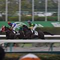 Suzuka Kingdom 06
