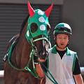 Photos: Omawarisan
