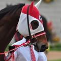 Photos: Grand Prix Boss 01