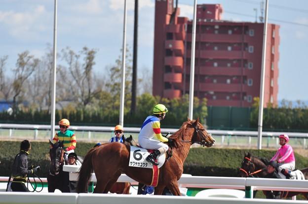 Sawayaka Yuta 10