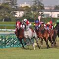 阪神大賞典4コーナー 02