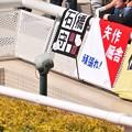 Photos: 石橋厩舎幕