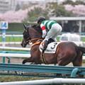 Adeyaka Komachi 08