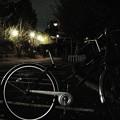 Photos: 銀色の風
