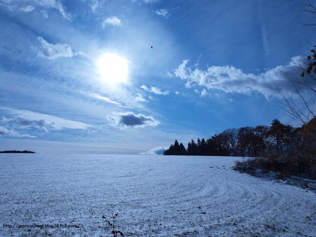 雪景色(^_^)