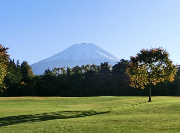 富士パインズパークから富士山