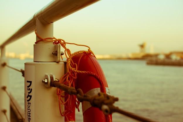 黄昏る浮き輪
