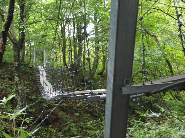 やたらめったら揺れる吊り橋