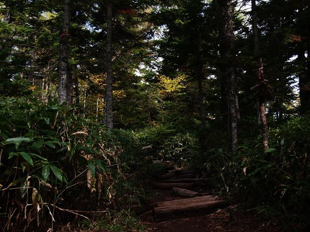 Photos: 秋への門