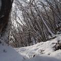 雪斜面を行く