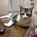Photos: セクシーウメちゃん
