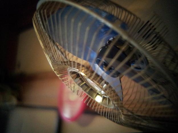 写真: 扇風機